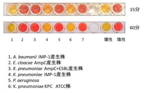 図3 検出の画像